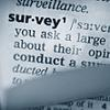 Image: Surveys